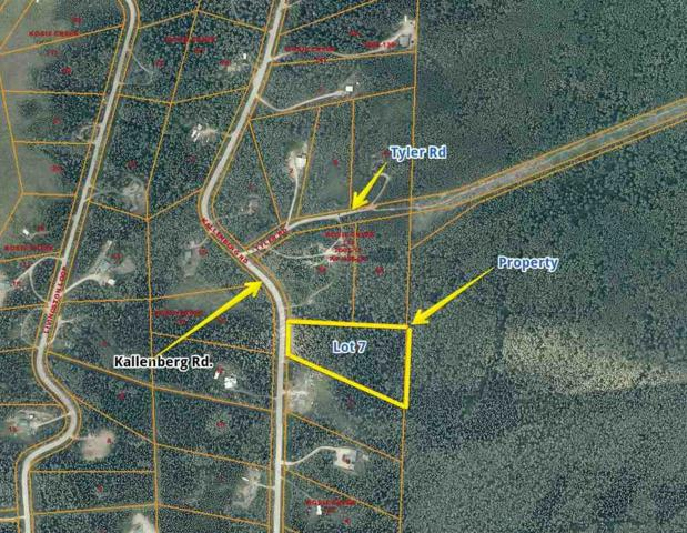 NHN Kallenberg Road, Fairbanks, AK 99709 (MLS #133201) :: Madden Real Estate