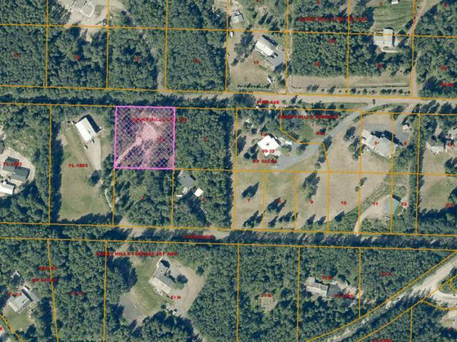 NHN View Avenue, Fairbanks, AK 99712 (MLS #133215) :: Madden Real Estate