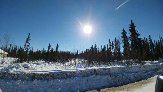 NHN Sonoma Avenue, North Pole, AK 99705 (MLS #133551) :: Madden Real Estate