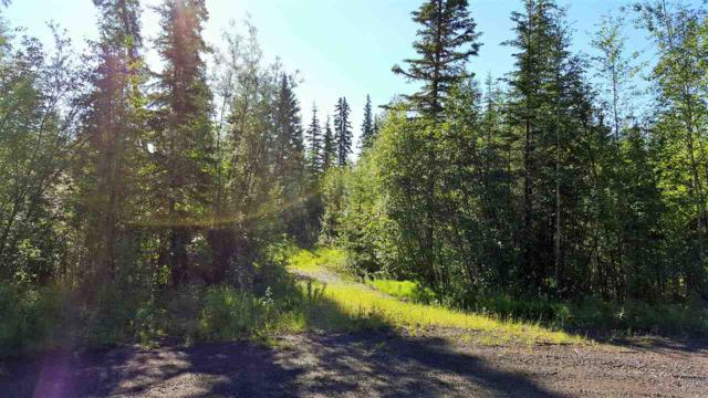 NHN Timberbrook Drive, North Pole, AK 99705 (MLS #133559) :: Madden Real Estate
