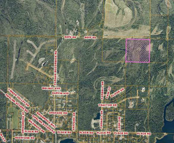 nhn Repp Road, North Pole, AK 99705 (MLS #133583) :: Madden Real Estate