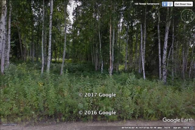 L3B2 NHN Teresa Turnaround/Mcgrath, Fairbanks, AK 99701 (MLS #133723) :: Madden Real Estate