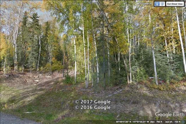 L11B4 NHN Gower Drive, Fairbanks, AK 99709 (MLS #133739) :: Madden Real Estate