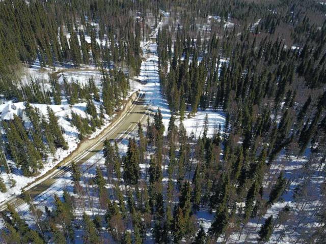 L17B4 NHN Gower Drive, Fairbanks, AK 99709 (MLS #133740) :: Madden Real Estate