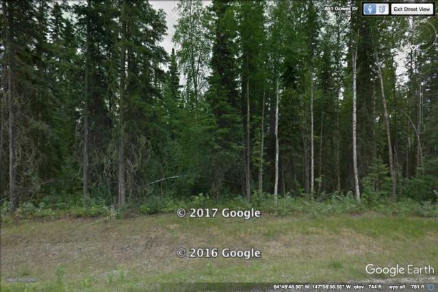 L19B4 NHN Gower Drive, Fairbanks, AK 99709 (MLS #133741) :: Madden Real Estate