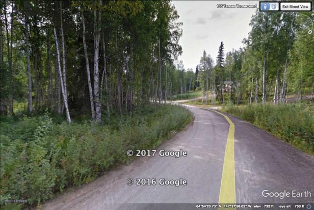 L4B2 NHN Teresa Turnaround/Mcgrath, Fairbanks, AK 99712 (MLS #133761) :: Madden Real Estate