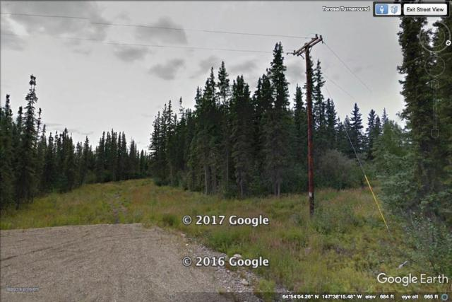 Tract A-4 NHN Teresa Turnaround, Fairbanks, AK 99712 (MLS #133772) :: Madden Real Estate