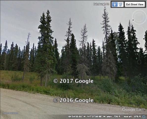 L9B2 NHN Teresa Turnaround, Fairbanks, AK 99712 (MLS #133773) :: Madden Real Estate