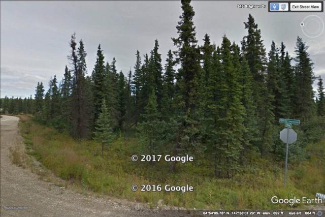 L10B2 NHN Teresa Turnaround/Mcgrath, Fairbanks, AK 99712 (MLS #133774) :: Madden Real Estate