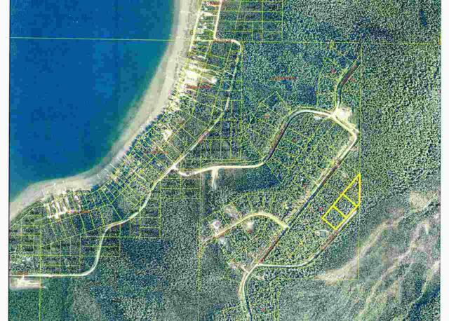 Lot 2 South Draw Road, Salcha, AK 99714 (MLS #133872) :: Madden Real Estate