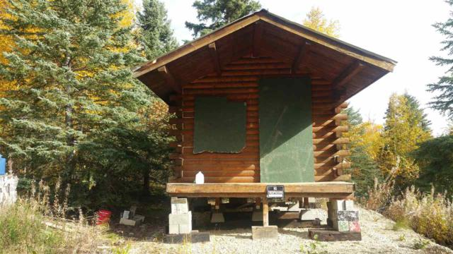 10271 Peregrine Ridge Road, Salcha, AK 99714 (MLS #133900) :: Madden Real Estate