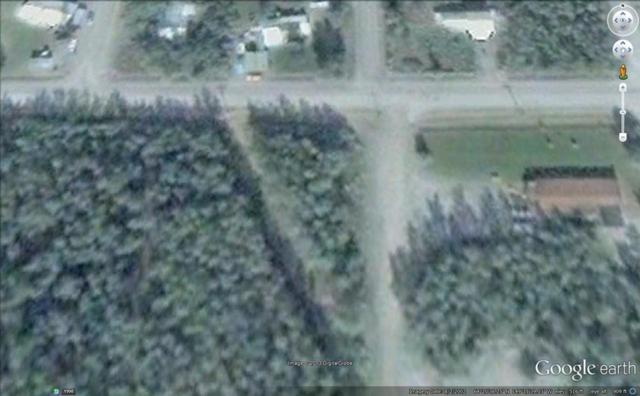 NHN None Assigned, Nenana, AK 99760 (MLS #133953) :: Madden Real Estate