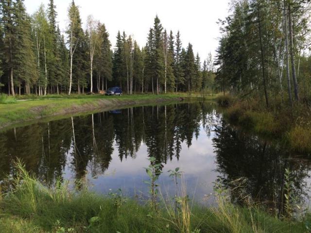 3593 Rosie Creek Road, Fairbanks, AK 99709 (MLS #133968) :: Madden Real Estate