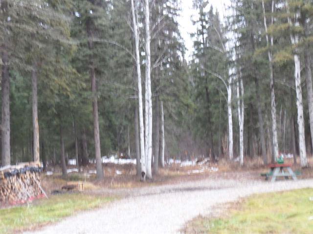 NHN Rosie Creek Road, Fairbanks, AK 99709 (MLS #133969) :: Madden Real Estate