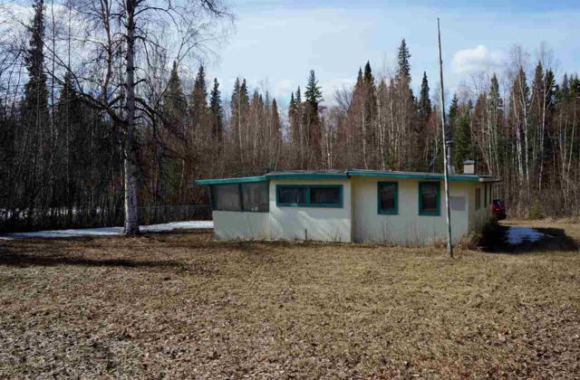 9699 Salcha Drive, Harding Lake, AK 99714 (MLS #133996) :: Madden Real Estate