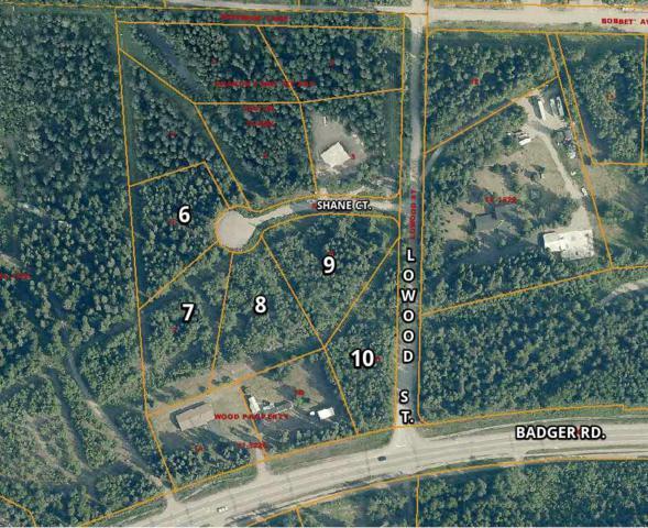 NHN Shane Court, North Pole, AK 99705 (MLS #134178) :: Madden Real Estate