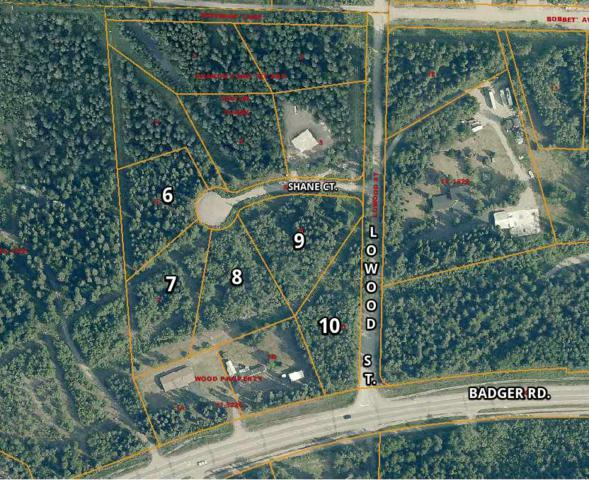 NHN Shane Court, North Pole, AK 99705 (MLS #134180) :: Madden Real Estate