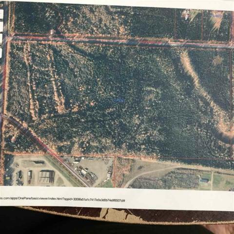 TL-812 Freeman Road, North Pole, AK 99705 (MLS #134240) :: Madden Real Estate
