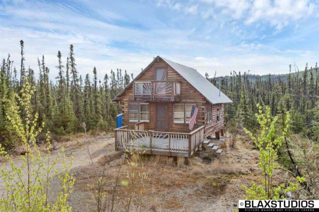 11333 Salcha Drive, Salcha, AK 99714 (MLS #134326) :: Madden Real Estate