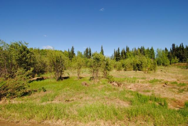 NHN Foxtail Drive, Fairbanks, AK 99712 (MLS #134365) :: Madden Real Estate