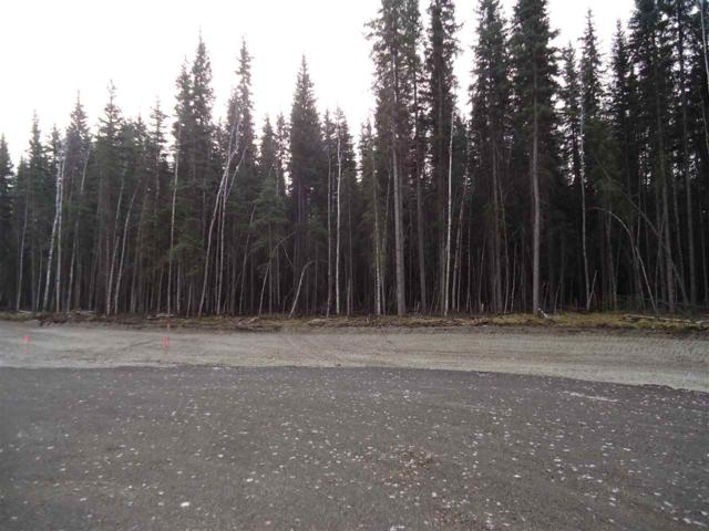 NHN Fairland Drive, North Pole, AK 99705 (MLS #134416) :: Madden Real Estate