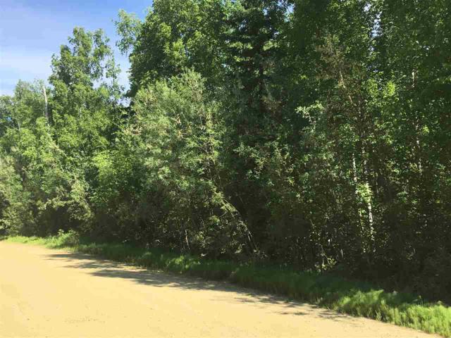 nhn Pickering Drive, Fairbanks, AK 99709 (MLS #134418) :: Madden Real Estate