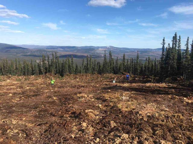 2064 Himilaya Road, Fairbanks, AK 99712 (MLS #134423) :: Madden Real Estate