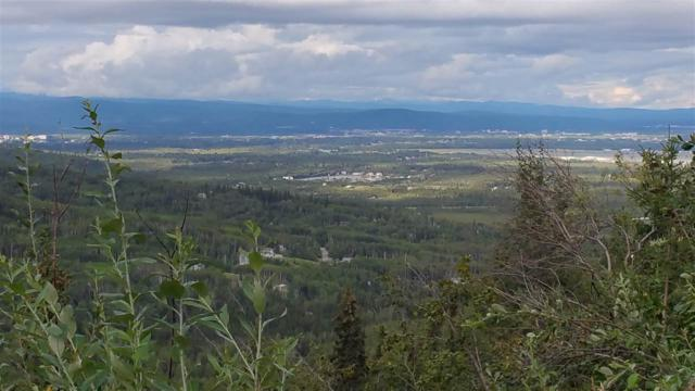 NHN Chena Ridge Road, Fairbanks, AK 99709 (MLS #134599) :: Madden Real Estate