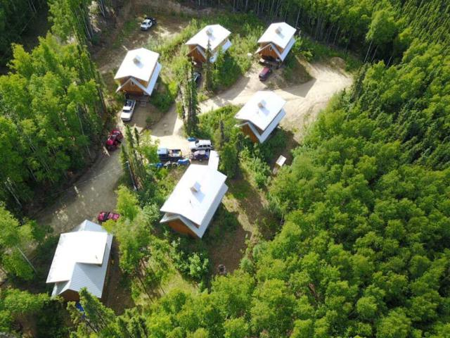 4010 Old Wood Road, Fairbanks, AK 99709 (MLS #134665) :: Madden Real Estate