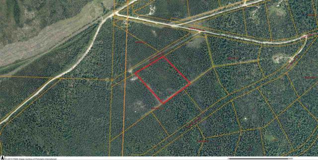 NHN High Sierra Drive, Fairbanks, AK 99709 (MLS #134678) :: Madden Real Estate