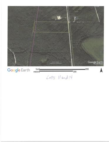 L11,14 James Drive, Delta Junction, AK 99737 (MLS #134699) :: Madden Real Estate