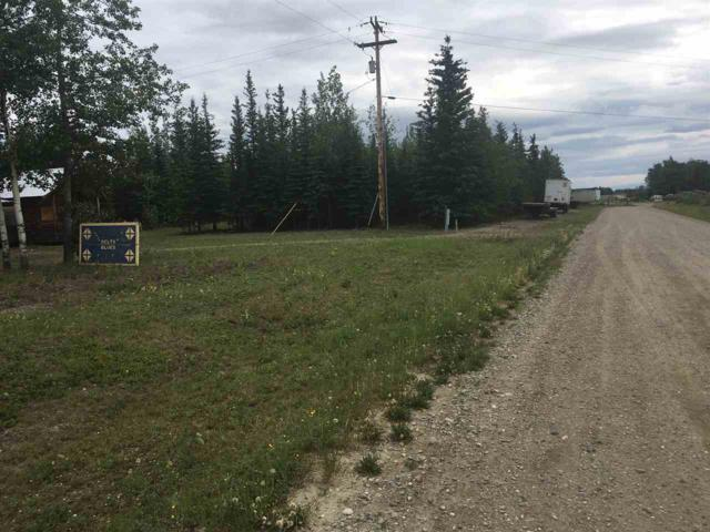 NHN Leng Road, Delta Junction, AK 99775 (MLS #134720) :: Madden Real Estate