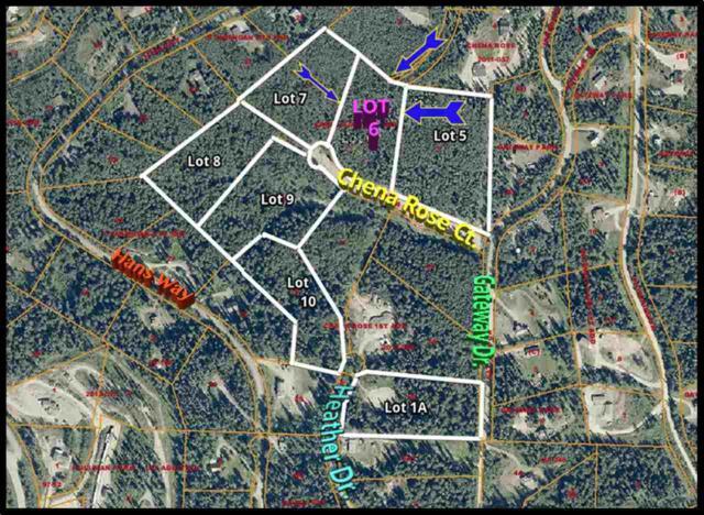 Lot6 Chena Rose Court, Fairbanks, AK 99709 (MLS #134732) :: Madden Real Estate