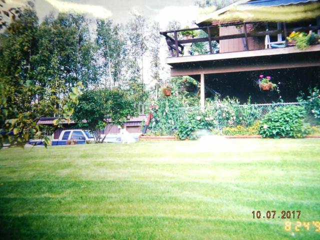 561 Chena Hot Springs Road, Fairbanks, AK 99712 (MLS #134768) :: Madden Real Estate