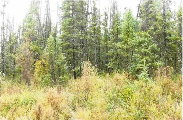 nhn Clear Creek, Salcha, AK 99714 (MLS #134798) :: Madden Real Estate