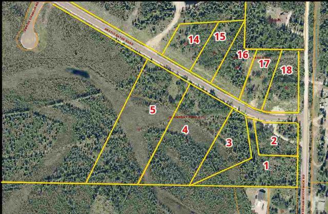 NHN Parham-Mccormik Road, North Pole, AK 99705 (MLS #134810) :: Madden Real Estate