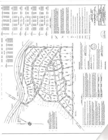 NHN Kiana Lane, Delta Junction, AK 99737 (MLS #134820) :: Madden Real Estate