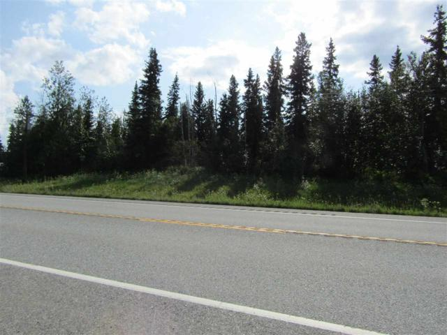 L2-3 Richardson Highway, Delta Junction, AK 99737 (MLS #134862) :: Madden Real Estate
