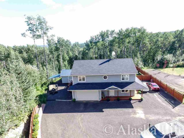 1297 Wideview Rd., Fairbanks, AK 99709 (MLS #134920) :: Madden Real Estate