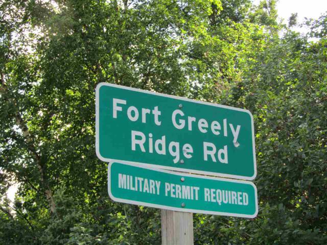 NHN Ft. Greely Ridge Road, Delta Junction, AK 99737 (MLS #134957) :: Madden Real Estate
