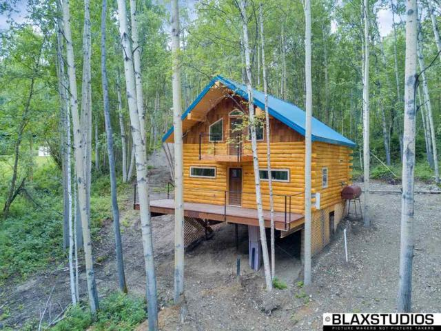 457 Summer Avenue, Fairbanks, AK 99712 (MLS #135023) :: Madden Real Estate