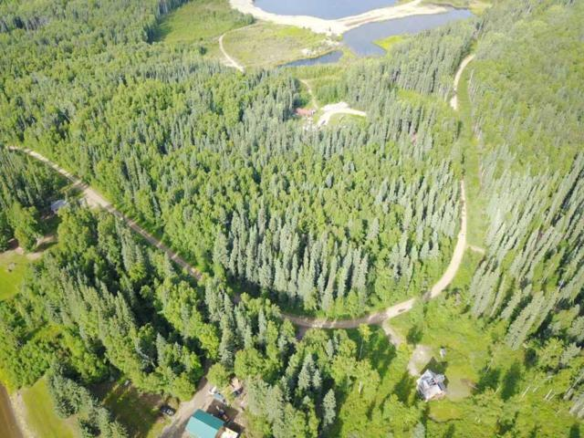 L4B2 Bate Street, Fairbanks, AK 99712 (MLS #135028) :: Madden Real Estate