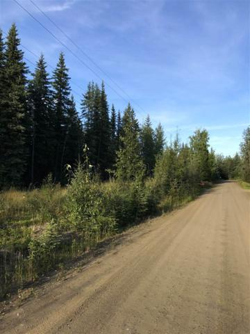 NHN Brookview Lane, North Pole, AK 99705 (MLS #135039) :: Powered By Lymburner Realty