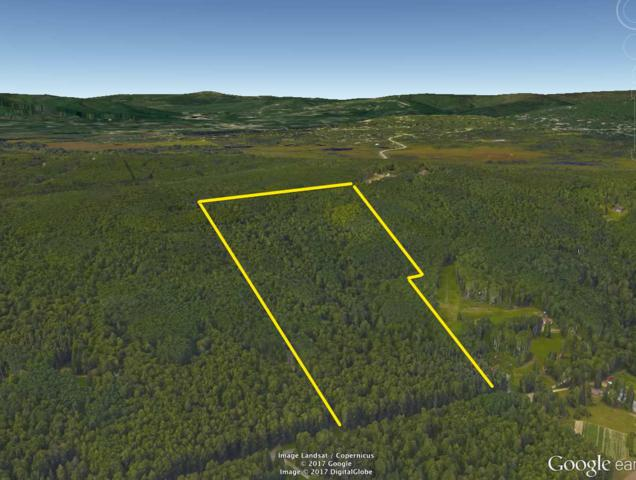 NHN Grenac Road, Fairbanks, AK 99712 (MLS #135099) :: Madden Real Estate