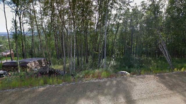 NHN Donna Drive, Fairbanks, AK 99709 (MLS #135113) :: Madden Real Estate