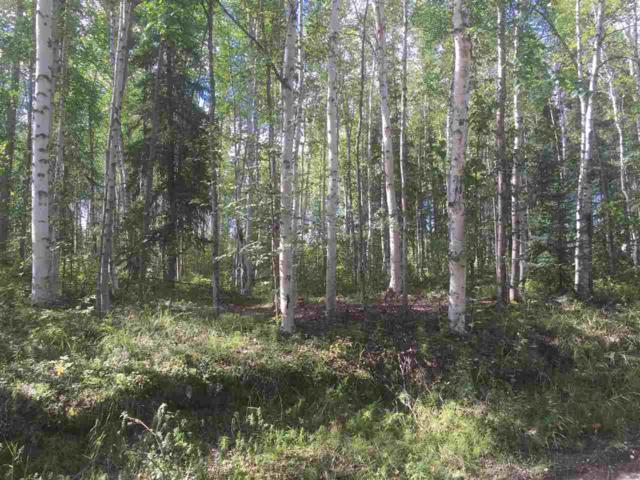 NHN Nhn Nenana, Nenana, AK 99760 (MLS #135115) :: Madden Real Estate