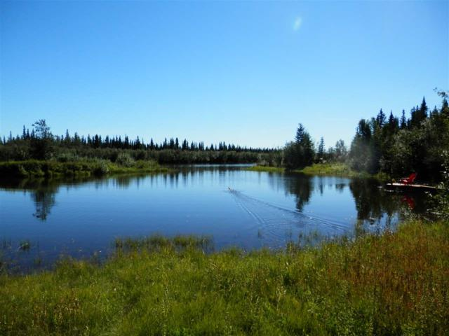 NHN Schoenberger Avenue, Fairbanks, AK 99709 (MLS #135136) :: Powered By Lymburner Realty