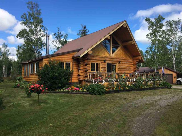 308.7 Parks Highway, Nenana, AK 99760 (MLS #135141) :: Madden Real Estate