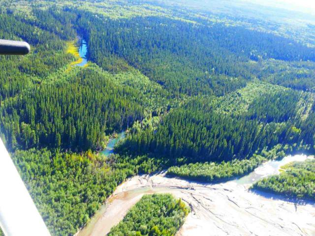 NHN Wood River, Fairbanks, AK 99701 (MLS #135163) :: Madden Real Estate