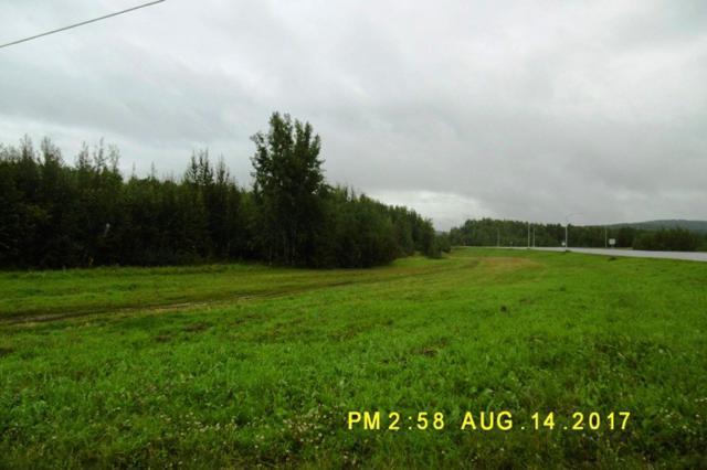 1860 Steese Highway, Fairbanks, AK 99712 (MLS #135165) :: Madden Real Estate